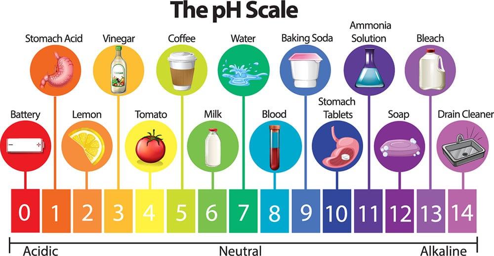 thang đo mức độ pH của nước